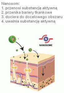 nanosomy opis